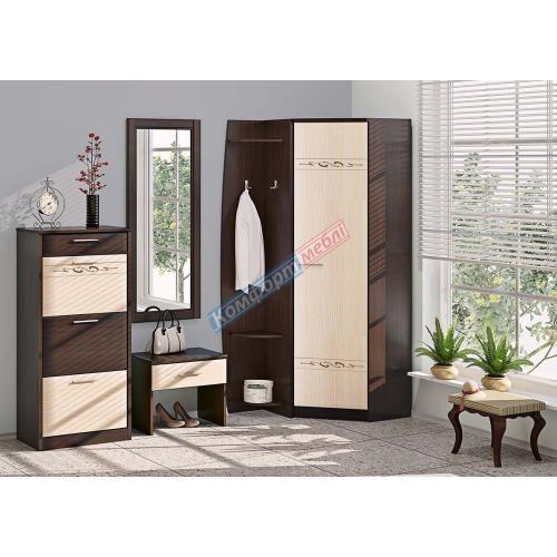 Прихожие серии «ХАЙ-ТЕК» Прихожая ВТ-3943 КМ-2102 мебель Киев