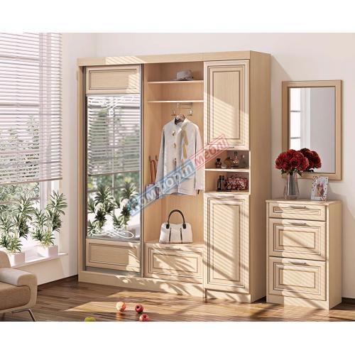 Прихожие серии «ПРЕМИУМ» Прихожая ВТ-4021 КМ-2178 мебель Киев