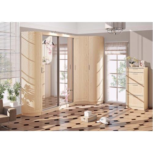Прихожие серии «СОПРАНО» Прихожая ВТ-3996 КМ-2154 мебель Киев