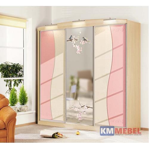 Шкафы-купе Шкаф-купе Ф-5437 КМ-2276 мебель Киев